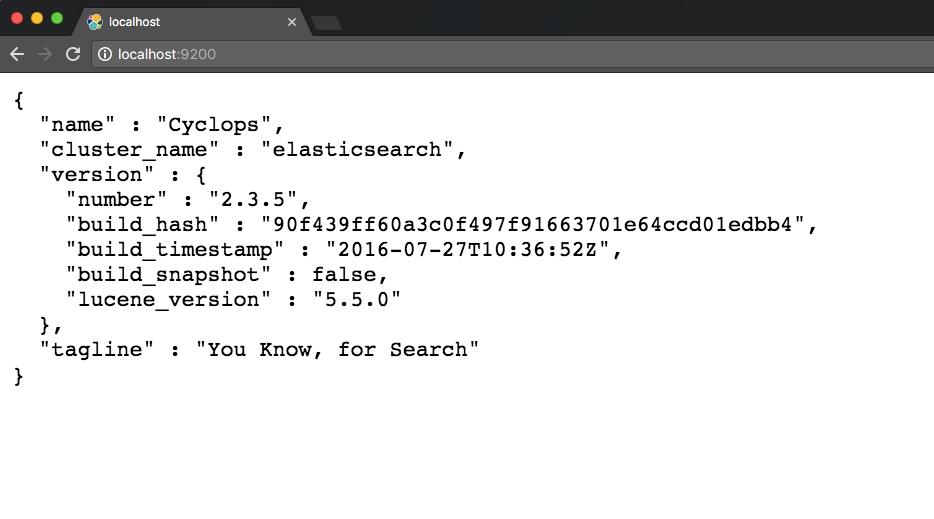 ElasticSearch Main Screen