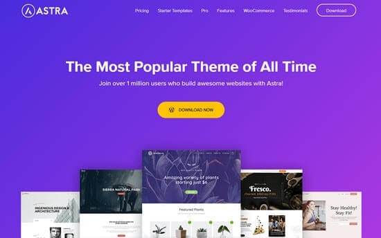 Wordpress Themes For Blogs Astra