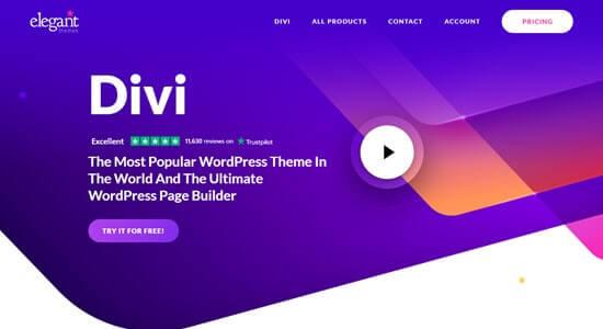 Wordpress Themes For Blogs Divi