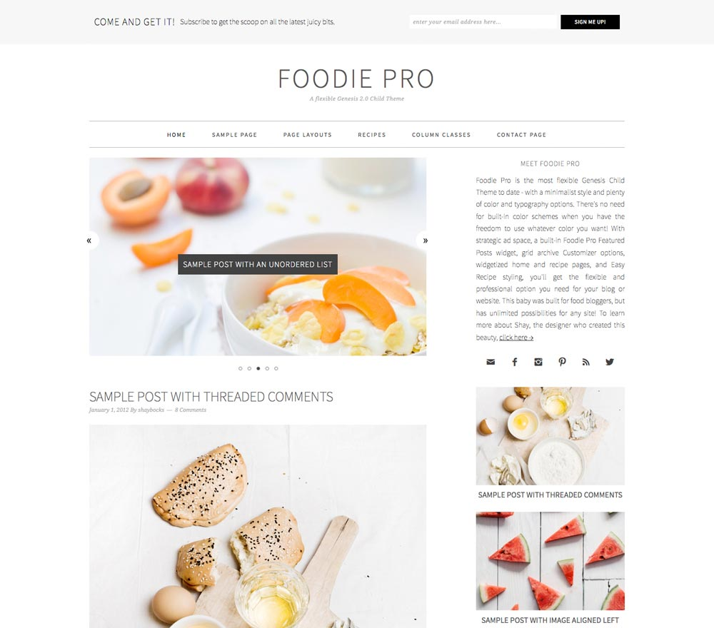 Wordpress Themes For Blogs Foodie
